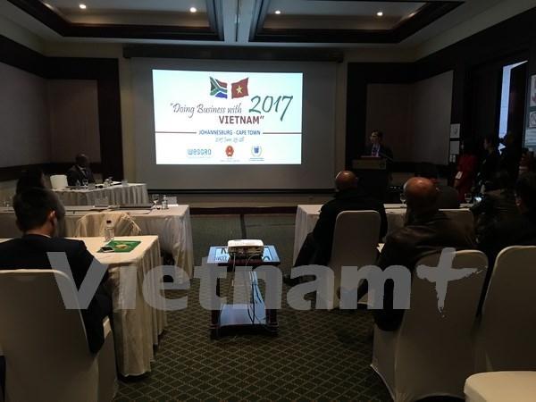 Buscan Vietnam y Sudafrica medidas para robustecer relaciones comerciales hinh anh 1