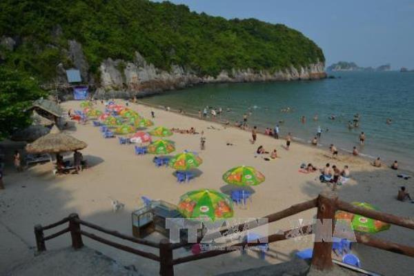 Hai Phong atrae a mas de tres millones de turistas en primer semestre de 2017 hinh anh 1