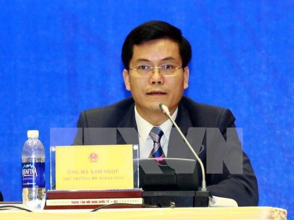 Vietnam y Brasil intensifican mecanismo de consulta politica hinh anh 1