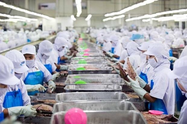 Tailandia retrasa la aplicacion de ley de empleo para extranjeros hinh anh 1