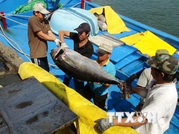 Atun y maricos impulsan crecimiento de exportaciones acuicolas de Vietnam hinh anh 1