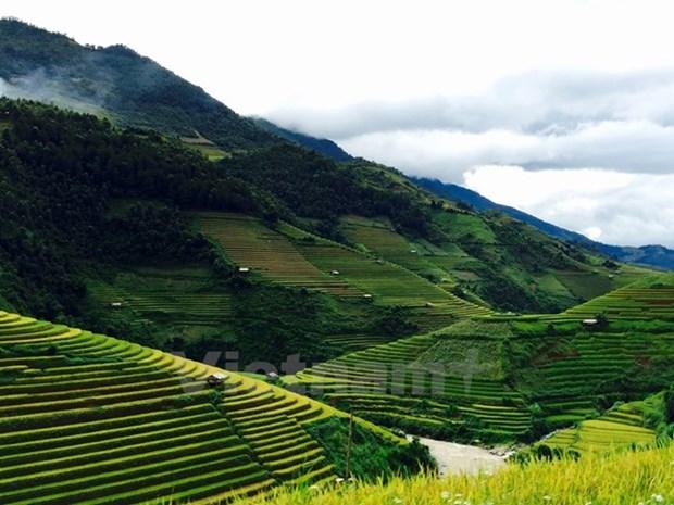 Terrazas de arroz de Mu Cang Chai, un lugar donde reina la belleza hinh anh 1
