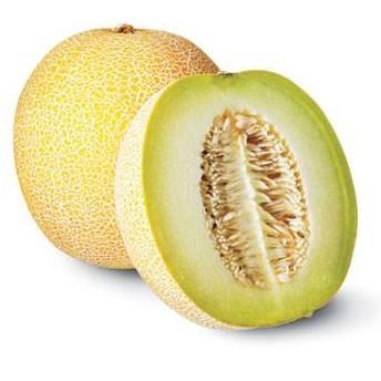 Cultivo de melon de alta tecnologia eleva ingresos de agricultores vietnamitas hinh anh 1