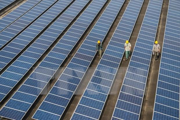 Acwa Power invierte en proyectos de energia renovable en Vietnam hinh anh 1