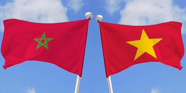 Vietnam profundiza cooperacion legislativa con Marruecos hinh anh 1
