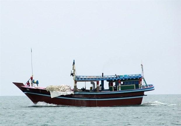 Malasia endurece medidas contra pescadores extranjeros ilegales hinh anh 1