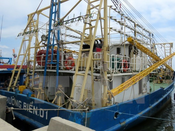 Premier vietnamita exige investigacion sobre construccion de pesqueros de baja calidad hinh anh 1