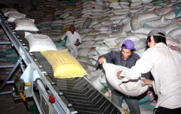 Vietnam planea reducir exportaciones de arroz hinh anh 1