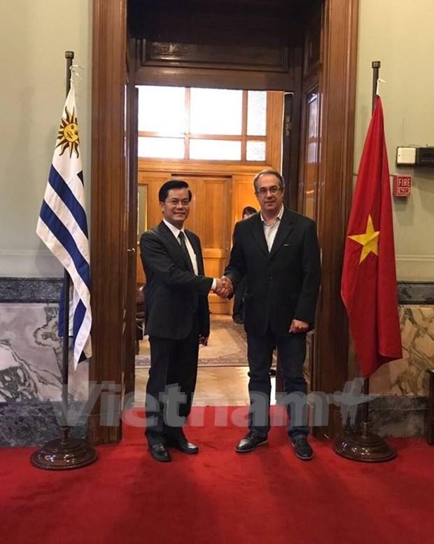 Vietnam y Uruguay fortalecen nexos politicos hinh anh 1