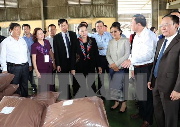 Presidentas de parlamentos vietnamita y laosiano rinden homenaje a martires hinh anh 1