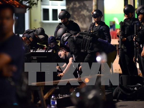 Desbaratan planes de atentados en Indonesia hinh anh 1