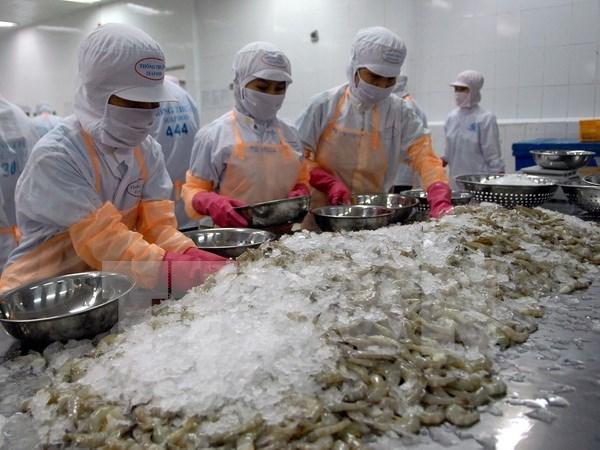 Vietnam aumenta exportacion de camarones hinh anh 1