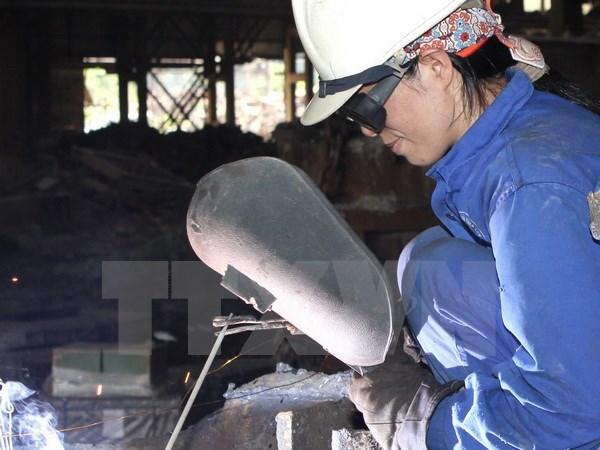 Astillero rumano reclutara a 300 trabajadores vietnamitas hinh anh 1