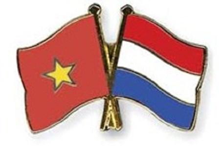 Vietnam desea adquirir experiencias neerlandesas en gestion de recursos hidricos hinh anh 1