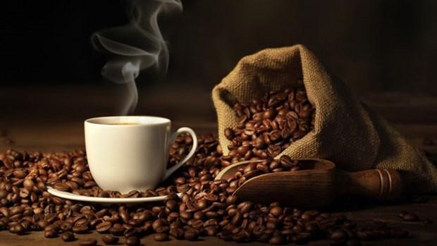 Valor de exportacion de anacardo y cafe de Vietnam registra alto crecimiento hinh anh 1