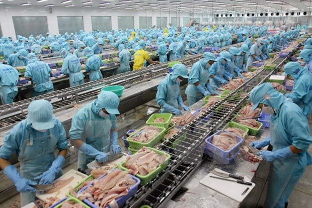 Vietnam promulga seis nuevas leyes hinh anh 1