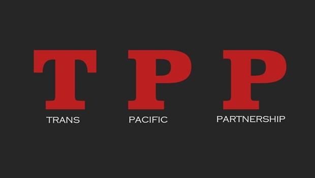 Paises miembros del TPP continuan con negociaciones sin Estados Unidos hinh anh 1
