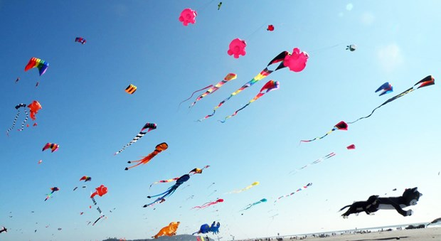 Celebraran en playa vietnamita festival de papalotes hinh anh 1