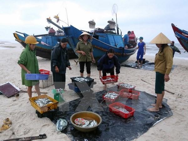 Aguas de la costa central de Vietnam son seguras, afirman autoridades hinh anh 1