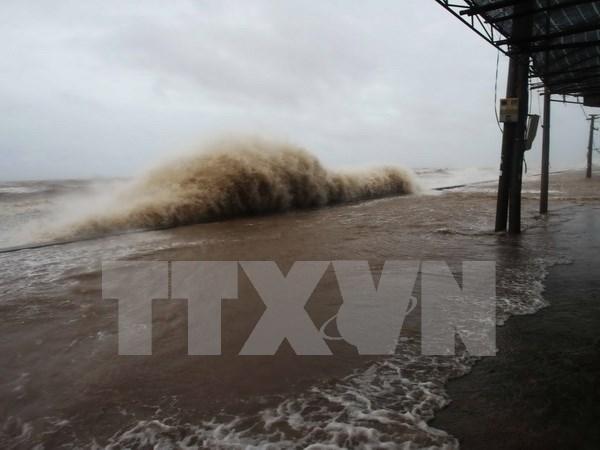 Quang Ninh suspende operacion de barcos turisticos debido a tifon Talas hinh anh 1