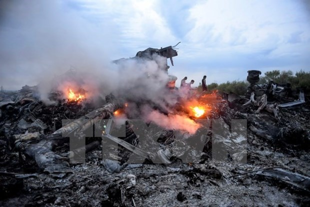 Inauguran monumento a victimas del derribado vuelo MH17 hinh anh 1