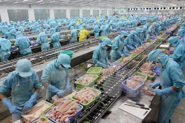 Vietnam busca superar dificultades en exportacion del pescado Tra hinh anh 1