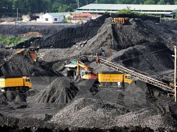 Produccion de carbon en Vietnam espera alcanzar 36 millones de toneladas hinh anh 1