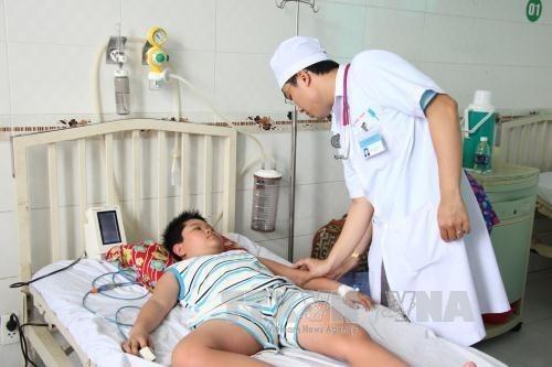 Incrementan casos de dengue en region vietnamita del Delta del Rio Mekong hinh anh 1