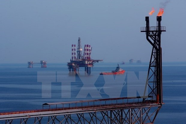 Exportacion petrolera: sector clave de economia vietnamita hinh anh 1
