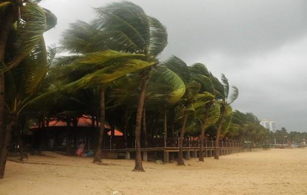  Vietnam se prepara ante llegada de tifon Sonca hinh anh 1