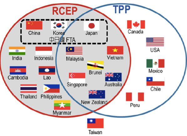 Realizan negociaciones en India sobre RCEP hinh anh 1