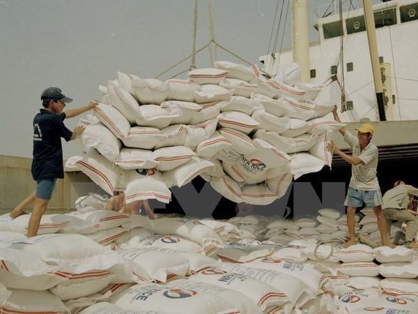 Empresas vietnamitas participaran en licitacion de 250 mil toneladas de arroz para Filipinas hinh anh 1