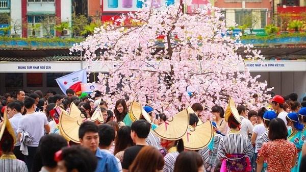 Celebraran en Da Nang programa de intercambio cultural Vietnam- Japon hinh anh 1