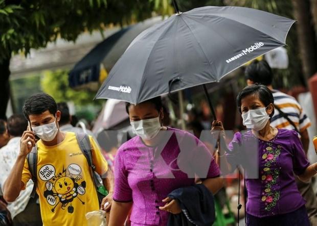 Registran brotes de gripe aviar en Myanmar hinh anh 1