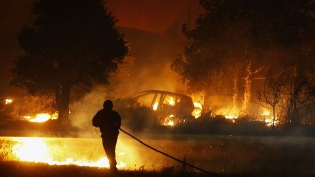 Decenas de indonesios hospitalizados por humo de incendio forestal hinh anh 1