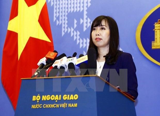 Vietnam pide a las partes respetar sus derechos legitimos en el Mar del Este hinh anh 1