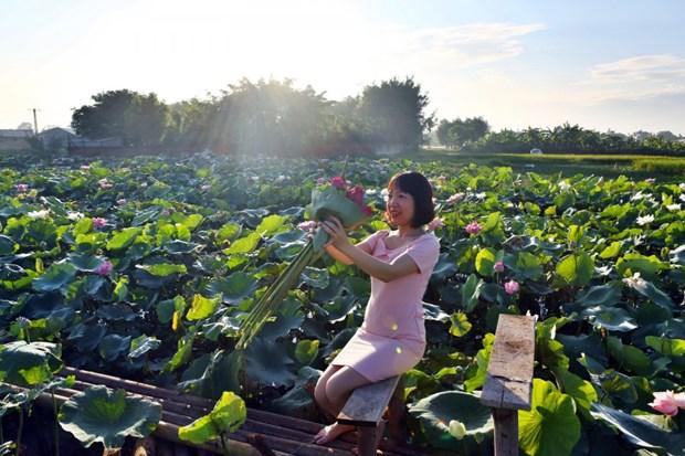 Reportaje: Ninh Xa, destino apacible para disfrutar el verano hinh anh 1