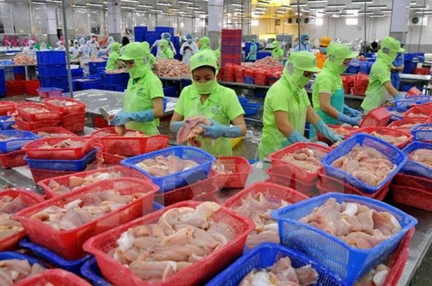 Vietnam ingresa fondo multimillonario por venta al exterior de productos acuaticos hinh anh 1