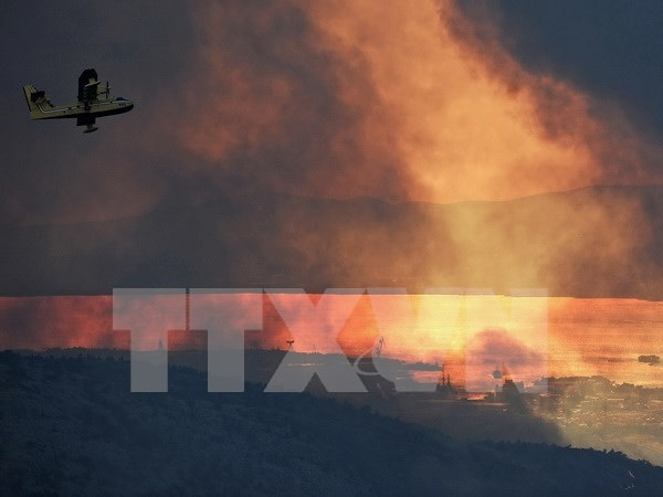 Malasia dispuesta a ayudar a Indonesia a combatir incendios forestales hinh anh 1