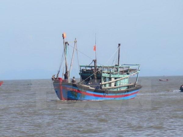 Vietnam repudia uso de fuerza contra pescadores nacionales hinh anh 1