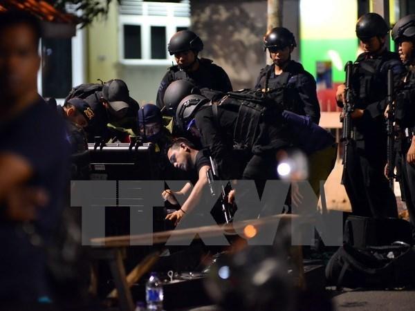 Indonesia y Nueva Zelanda acuerdan intensificar cooperacion antiterrorista hinh anh 1