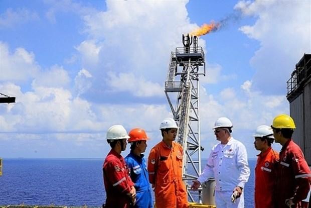 PetroVietnam produce 9,23 millones de toneladas de petroleo en siete meses hinh anh 1