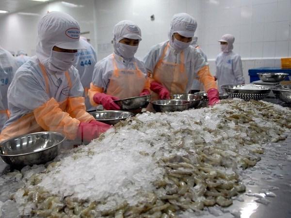 Reino Unido- mayor importador de camaron vietnamita en Union Europea hinh anh 1