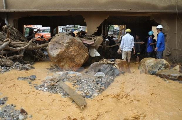 ASEAN ofrece asistencia a victimas de desastres naturales en Vietnam hinh anh 1