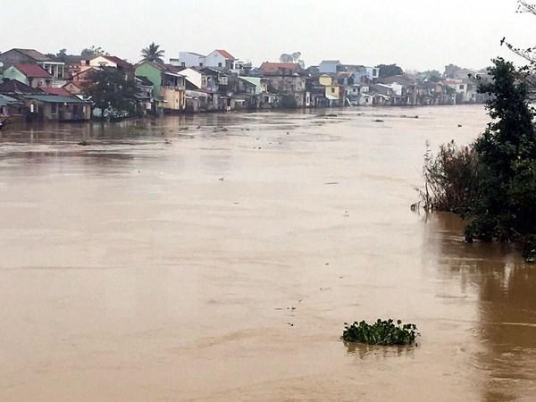 Japon ayuda a Vietnam en gestion de inundaciones hinh anh 1