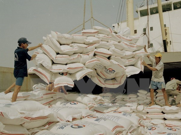 Gran potencial para exportaciones de arroz de Vietnam a Singapur hinh anh 1