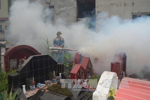 Hanoi refuerza medidas para controlar el dengue hinh anh 1