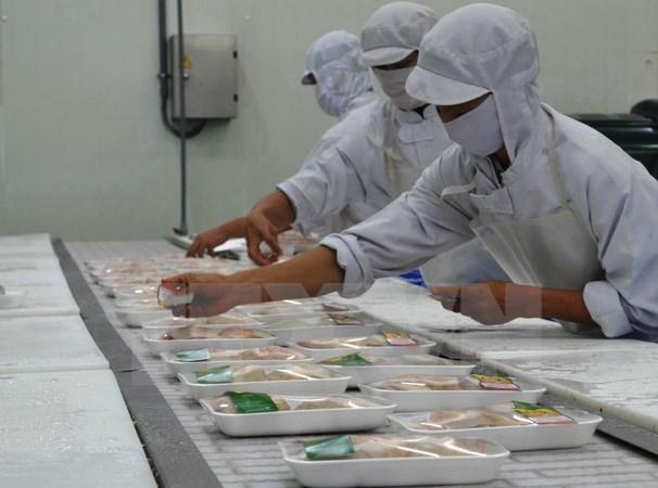 Paises de ASEAN y Australia impulsan cooperacion agricola hinh anh 1
