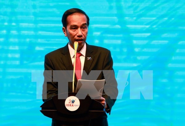 Presidente indonesio llama a unidad nacional ante amenazas de extremistas hinh anh 1