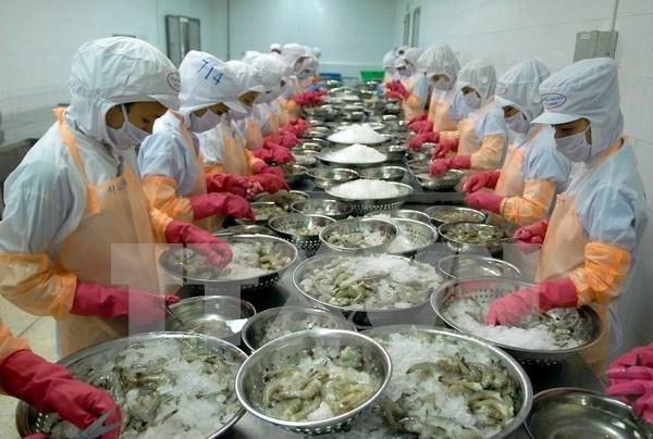 Estados Unidos rescinde parte de impuestos antidumping sobre camarones de Vietnam hinh anh 1